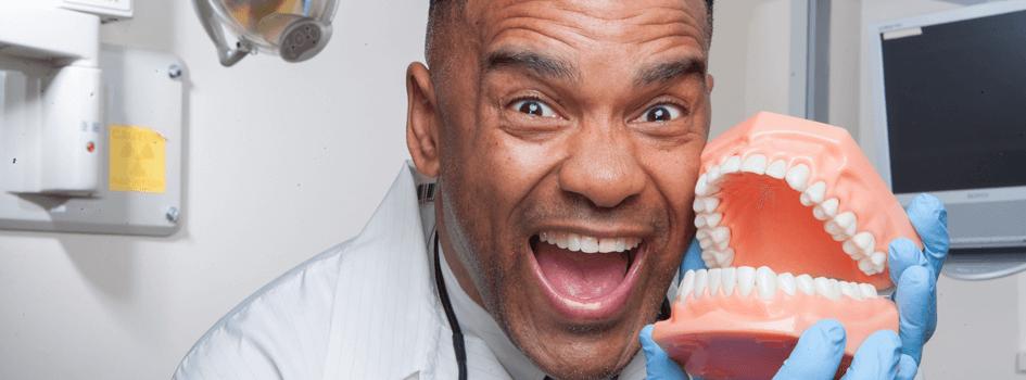 Waterloo Dentist - Erbsville Dental - A dentist holding model teeth